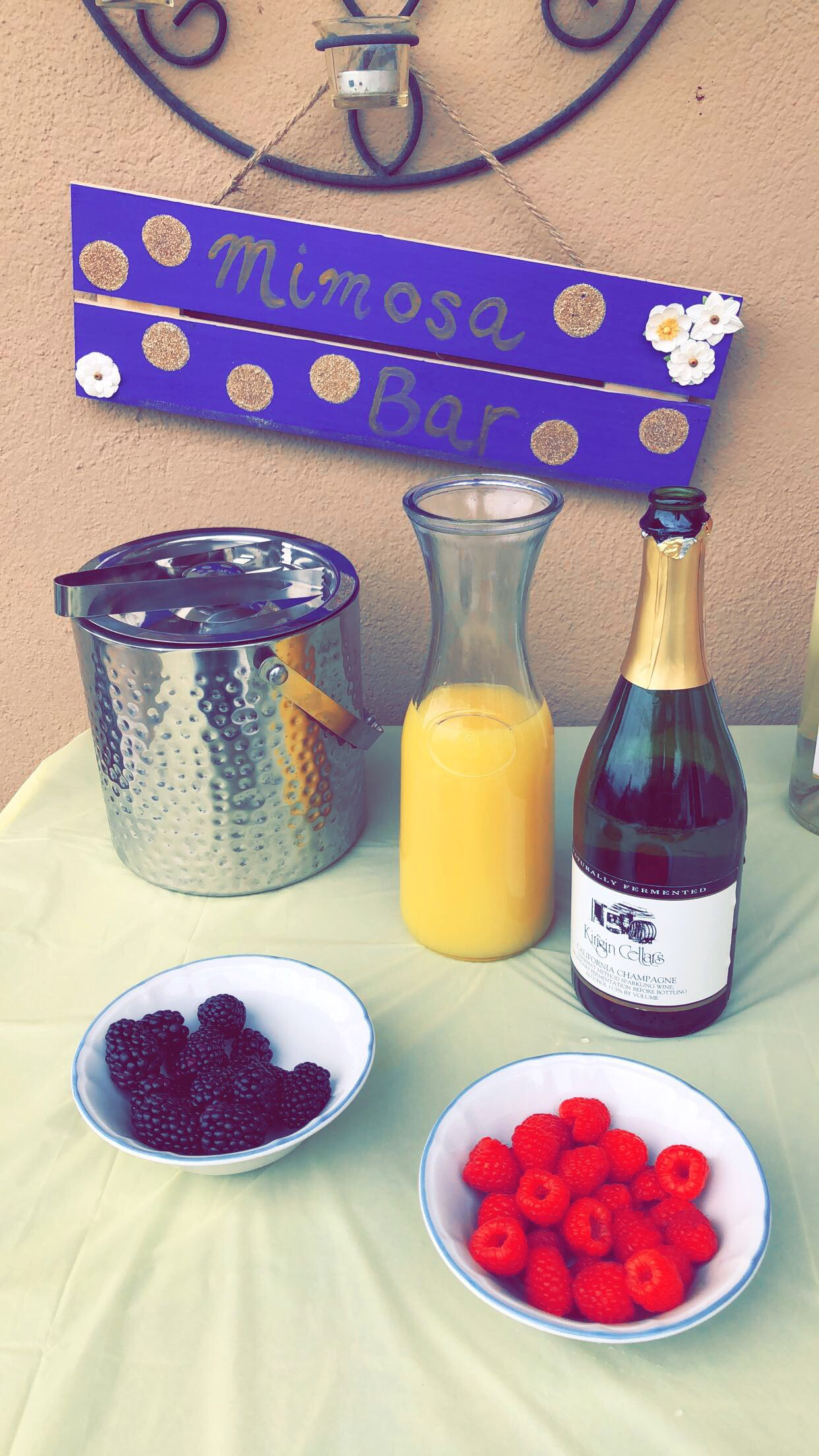 Happy National Mimosa Day!
